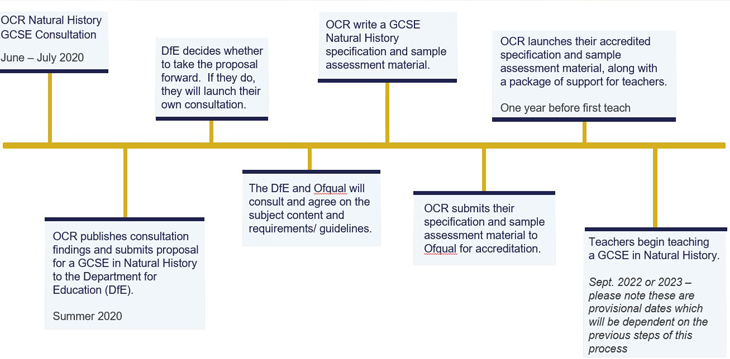 Timeline showing key dates for the GCSE in Natural History consultation